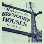 Welcome to Brevoort